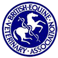 BLACKDOWN EQUINE CLINIC